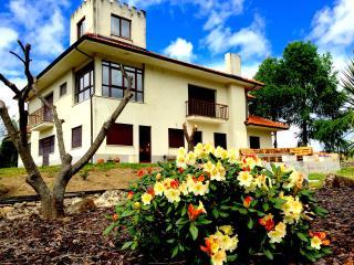 Vivenda Encantada - Tarouca vacation rentals