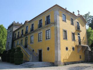 Quinta Faia Large Family Villa Sleeps 12 Amarante North Portugal - Amarante vacation rentals