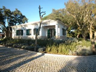 Villa Ribatejo - Luxury Villa Sleeps 10 nr Lisbon - Setubal District vacation rentals