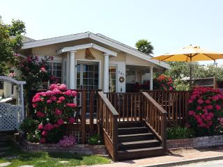 Bucks Beach Bungalow-7doors to Beach, Hot Tub etc - Santa Cruz vacation rentals