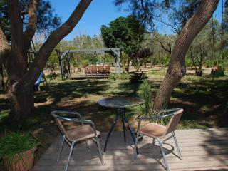 A spacious country house with open views of nature - Herzlia vacation rentals