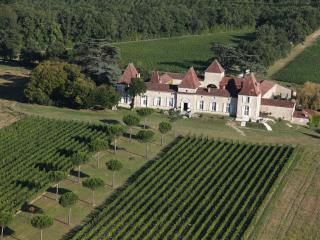 Chateau Tournesol - Lot-et-Garonne vacation rentals
