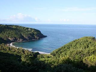 Hope Lodge - Bequia vacation rentals