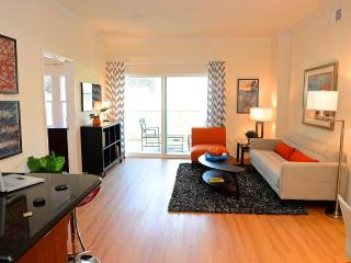 LA Downtown Luxury Apartment 2E - Los Angeles vacation rentals