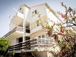 Apartment Gali - Dalmatia vacation rentals
