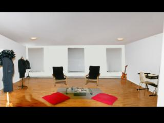 Beauty huge 1 bedroom available in 3 bedrooms apt - New York City vacation rentals
