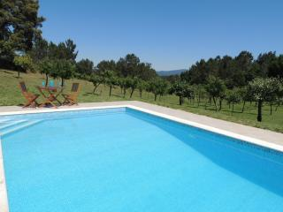 Pequenos Pinheiros at Quinta dos Sobreiros - Figueiro dos Vinhos vacation rentals