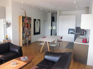 Harbour Luxury View - Reykjavik vacation rentals
