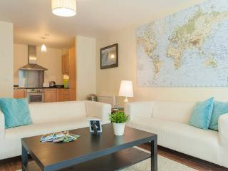 Large Central Dublin Apartment 6 - Dublin vacation rentals