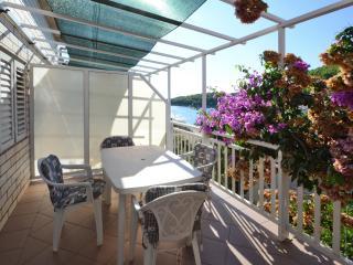 Apartment Lara - Ubli vacation rentals