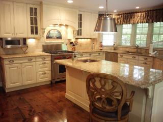 Large Luxury Home on Gold Coast-Beaches and NYC - Huntington vacation rentals