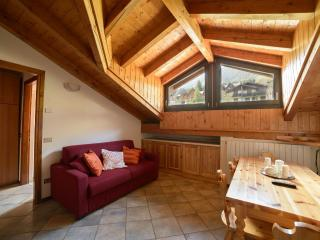 Nice & Cozy apartment - Tirano vacation rentals