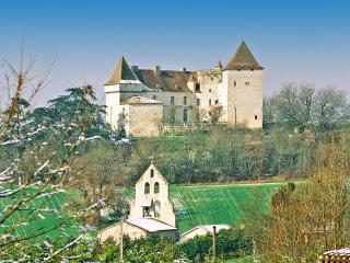 Chateau Garonne - Montaigu-de-Quercy vacation rentals