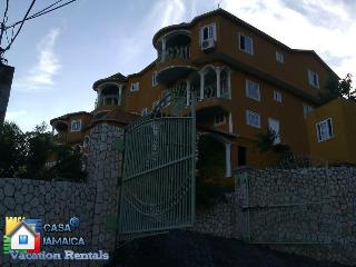 1 Bedroom Luxury Apartment, (Casa Tianna Kingston) - Kingston vacation rentals