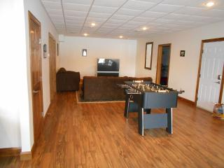 Magnificient East Side Newly Built Home - Finger Lakes vacation rentals