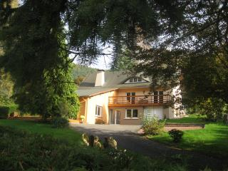 Le Wineck - Niederbronn-Les-Bains vacation rentals