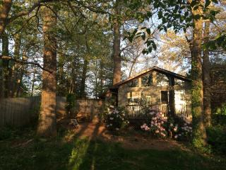 Glad Stone Getaway - Fletcher vacation rentals