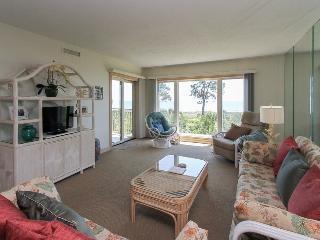 311 Shorewood - Forest Beach vacation rentals