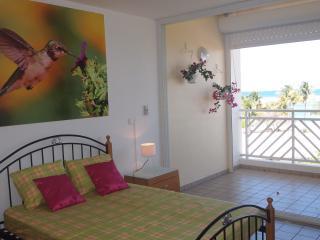 Studio Le Ti Colibri - Guadeloupe vacation rentals