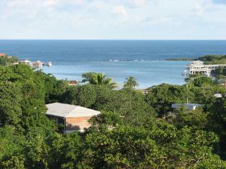 Luxurious and Private House in West End - Bay Islands Honduras vacation rentals