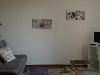 Beautiful 75sqm apartment by Lucca - Lucca vacation rentals