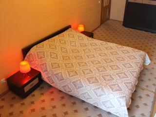2 rooms flat next to Moskovsky train station - Saint Petersburg vacation rentals