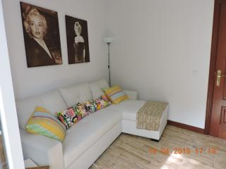 Madrid Downtown 2-4-6 guests  - 3 bedrooms - Madrid vacation rentals