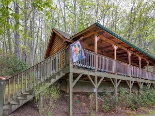 Nearly Eden | Mountain Getaway with Hot Tub and Fireplace - Black Mountain vacation rentals