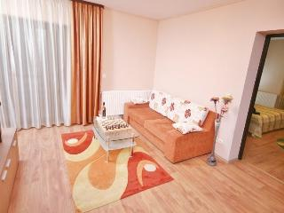 Apartment in TwinsApartHotel - Brasov vacation rentals