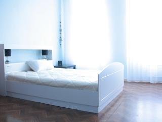 Cozy one bedroom in Downtown Nizhny Novgorod - Nizhniy Novgorod vacation rentals