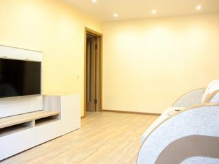 Spacious two room apartment close to downtown - Nizhniy Novgorod vacation rentals