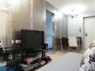 Rental Close to Convention Center in Wan Chai, Hong Kong - Hong Kong vacation rentals