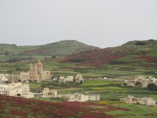 Gozo apartment - Island of Gozo vacation rentals
