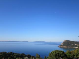 STUNNING SEA VIEW VILLA Golfe St Tropez w/ Aircon - Le Lavandou vacation rentals