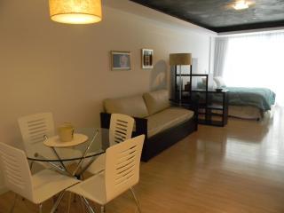 Buenos Aires, Recoleta - Beautiful Vacation Studio - Buenos Aires vacation rentals