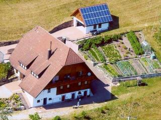 Vacation Apartment in Bad Rippoldsau-Schapbach - 753 sqft, max. 5 people (# 6211) - Tonbach vacation rentals