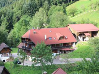 Vacation Apartment in Bad Peterstal-Griesbach - up to 5 persons. (# 7484) - Germany vacation rentals