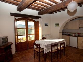 Apartment Giallo 702 - Colle di Val d'Elsa vacation rentals