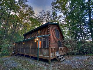 Seclusion, Privacy in the North Ga Mountains on Fightingtown Creek - Blue Ridge vacation rentals