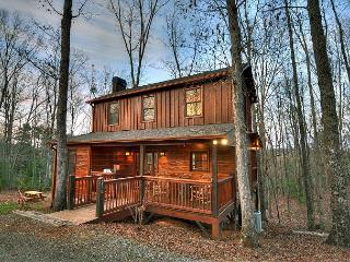 This 2 BR/2 BA Cabin is the perfect rustic getaway you've been looking for!!! - Blue Ridge vacation rentals