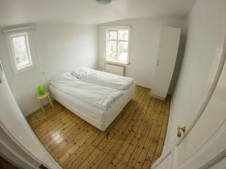 Downtown-Three bedroom private house - Reykjavik vacation rentals