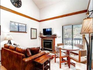 Beautiful Mountain Views - Close to Local Shops and Activities (13459) - Frisco vacation rentals