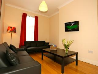 Sunny 2 bed flat across from Emirates - London vacation rentals