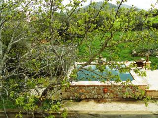 NA CARONA, finca with pool, WIFI and garden. - Manacor vacation rentals