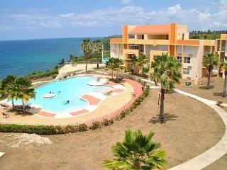 Breathtaking Luxury Oceanfront Penthouse Condo - Hatillo vacation rentals