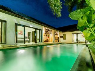 Modern and chic 3br villa in the heart of Seminyak - Seminyak vacation rentals