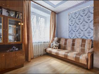 A quiet 2 bedroom apartment in 3 min from metro - Central Russia vacation rentals
