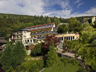 Guest Room in Bad Wildbad -  (# 7737) - Herrenberg vacation rentals