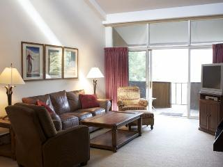 Affordable & Centrally Located Condo - Close to the Eagle Bahn Gondola (23663) - Vail vacation rentals
