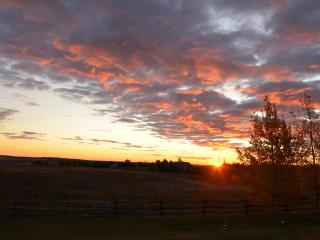 Peaceful Country Acreage 5 min from the City - Calgary vacation rentals